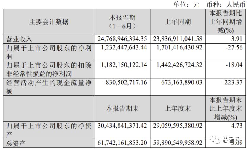 上半年净利同比暴增234.52%,它才是国内功率半导体龙头!